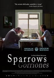 08 Sparrows gorriones