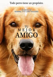 Poster Tu Mejor Amigo